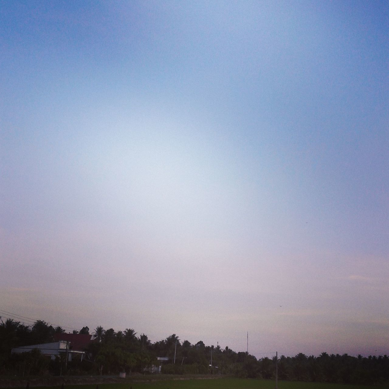 tranquility, nature, tranquil scene, no people, tree, beauty in nature, scenics, sunset, blue, outdoors, landscape, sky, clear sky, day