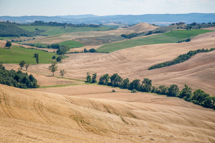 Panoramic view of traditional tuscany landscapes, siena province, tuscany, italy