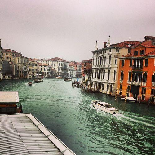 """""""In die Freiheit entfliehen"""" - Photography Venedig Venise Photos picture Italien"""