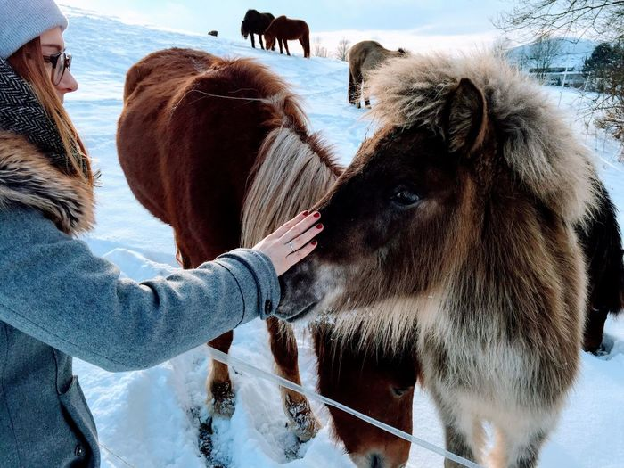 Side View Of Woman Petting Horse Standing On Field During Winter