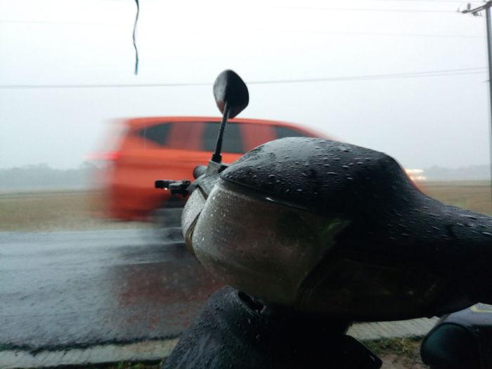 motor in the rain Water Spraying UnderSea Sea Underwater Aquatic Mammal Close-up