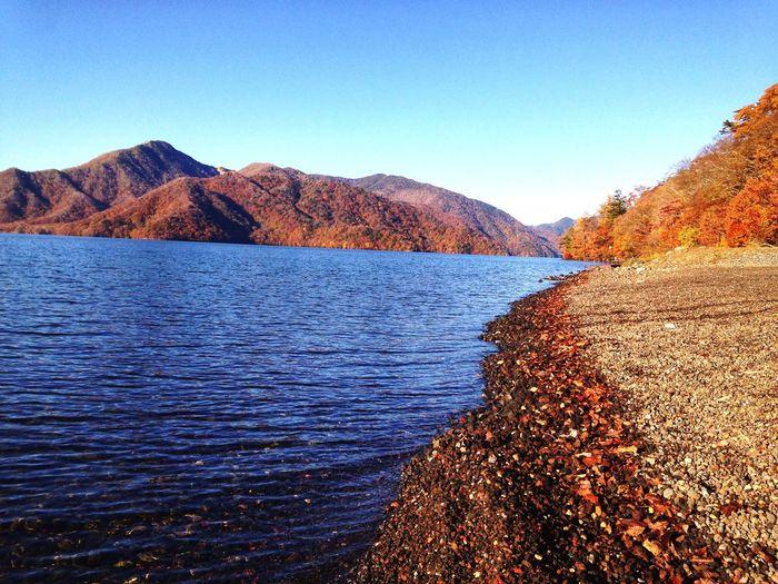 Japan Nature River Good Morning Happy First Eyeem Photo