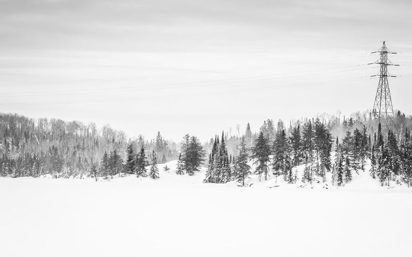 Black And White Photography Cold Cold Temperature High Key Lake View Lakeshore Powerlines The Great Outdoors - 2016 EyeEm AwardsSky And Clouds Snow Snow Covered Snow Covered Landscape Snow Covered Trees Sunrise Sunrise And Clouds Tower Tranquility Weather White Winter Winter Landscape Winter Scene Winter Wonderland Winterlandscapes Wintertime