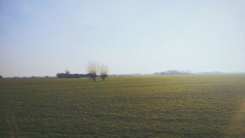 I love our Dutch Countryside. It always manages to distract and fully Capture me with its Simplicity during a nice long Bicycleride.