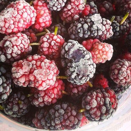 Fruits Frozen Fruit Blackberries