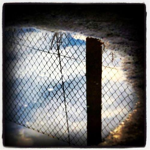 Verjas, alambradas y cuchillas impiden a muchos hombres y mujeres escapar desesperadamente de blanco guerra o el hambre. Y nosotros al otro lado, las ponemos cada vez más altas, cada vez más cuchillas, cada vez más vergüenza. Frontera España Mexico Derechos Huir Crimen Fuerza Hambre Melilla Alambrada Chile Border Fronterabarra Morocco Amazing Ceuta Cuchillas