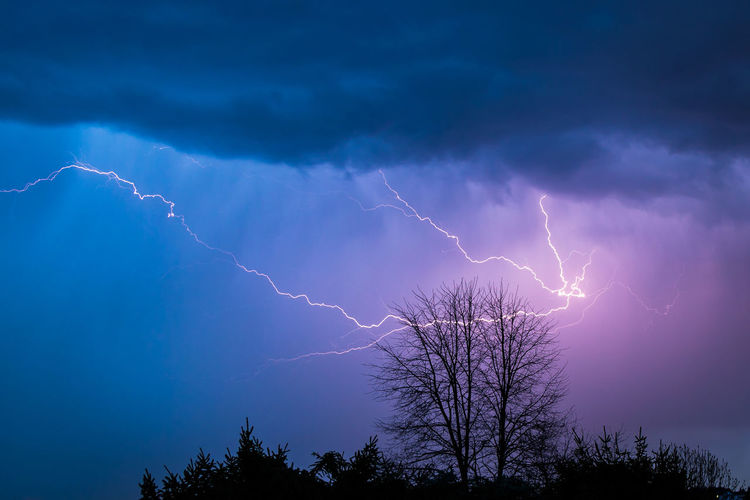 EyeEm Best Shots Beauty In Nature Cloud - Sky Electricity  Extreme Weather Eye4photography  Forked Lightning Lightning Low Angle View Nature Night No People Outdoors Plant Power Power In Nature Purple Scenics - Nature Silhouette Sky Storm Storm Cloud Thunderstorm Tree