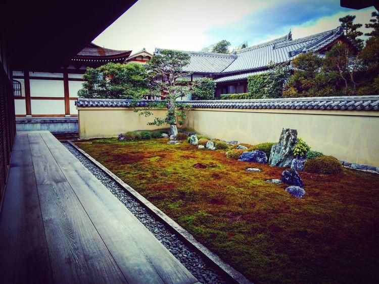 大徳寺 龍源院 庭園 寺社仏閣 京都 Kyoto Relaxing 竜吟庭