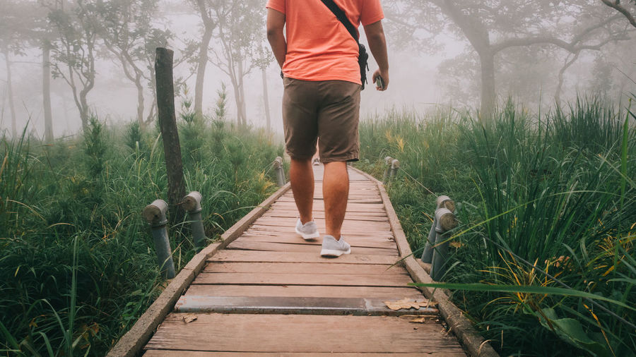 Low section of man walking on boardwalk amidst plants during foggy weather