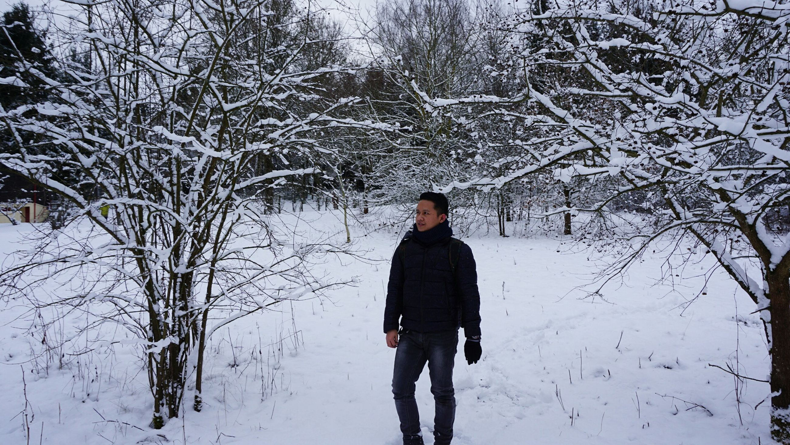 winter, snow, lifestyles, cold temperature, standing, leisure activity, rear view, tree, season, casual clothing, warm clothing, bare tree, full length, three quarter length, walking, young adult, nature, weather