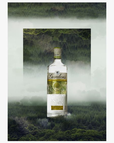 Manipulation Photoshop Advertising Elderflower Gin Gordon's Forest Shapes And Forms Shapes In Nature  Fog