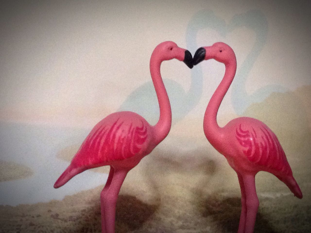 flamingo, pink color, no people, indoors, red, close-up, day, bird
