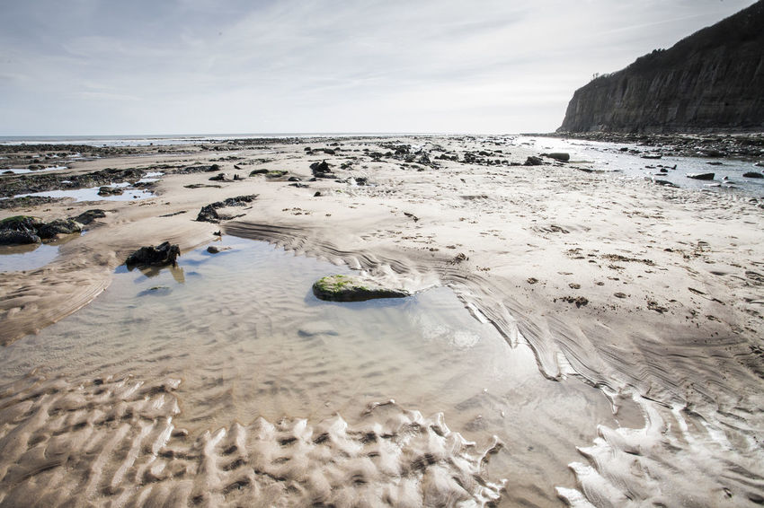 Sea view at low tide of Pett Level cliff end exposing rock formations covered with sea life growth and the emains of ancient forest, in the background sandstone cliffs Ancient Ancient Forest Buried By Sea Clouds And Sky Coastline Fossils And Rock Fossils And Rocks Horizon Over Water Nature_collection Nature_perfection Puddles Rocky Coastline Sandbeach Sandstone Cliffs Sea And Sky Sea Life Seascape Seaside_collection Strange Rockformations