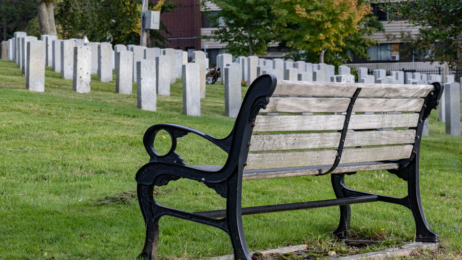 Military cemetery in Halifax Nova Scotia. Grass Plant Architecture Seat Nature Green Color No People Empty Day Bench Outdoors In A Row Wood - Material Field Lawn Built Structure Chair Building Exterior Absence Front Or Back Yard Park Bench Rocking Chair Cemetery Military Headstones In A Row