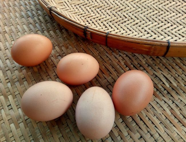 Many Fresh eggs on the wooden threshing basket Arrangement Decoration Wooden Threshing Basket Bamboo Basket Kitchen Egg Brown Table High Angle View No People Healthy Eating Indoors  Food Close-up Day
