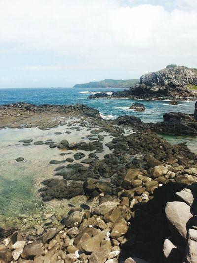 Maui. Maui Breathtaking The View Clear Water Whale Watching Hawaii Blues American Island Hopping 2015
