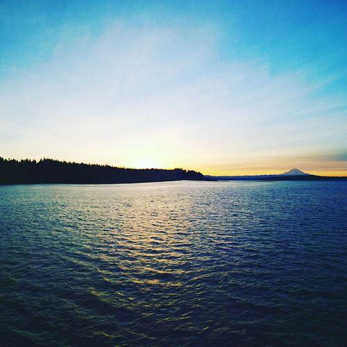 Sound, Sunrise & Rainier Sunset Nature Beauty In Nature Pugetsound Mtrainier Miles Away