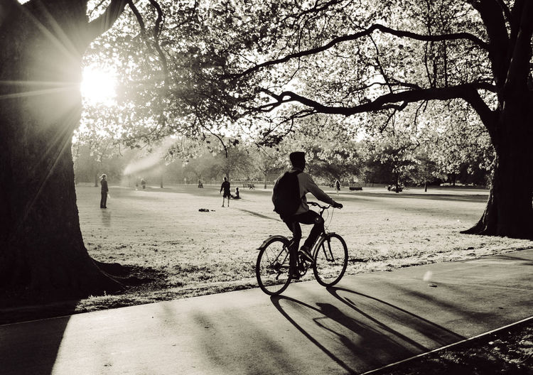 People riding bicycle on road against trees