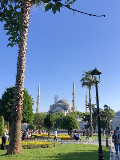 Mosques Of The