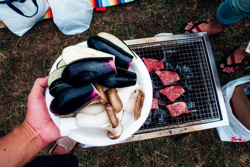 Directly Above Shot Of Man Holding Mushrooms And Eggplants In Plate Over Barbecue Grill