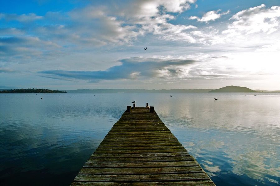 Rotorua New Zealand Landscape New Zealand Beauty New Zealand Scenery Water Sky And Clouds Reflection Nature Photography Nature_collection Eyemphotography Birds_collection Lake Lake View Rotorua New Zealand Rotorua  Wharf Wharfside EyEmNewHere