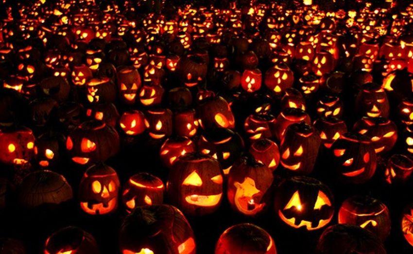 Halloween is near 🍰🍫🍬🍭 Halloween