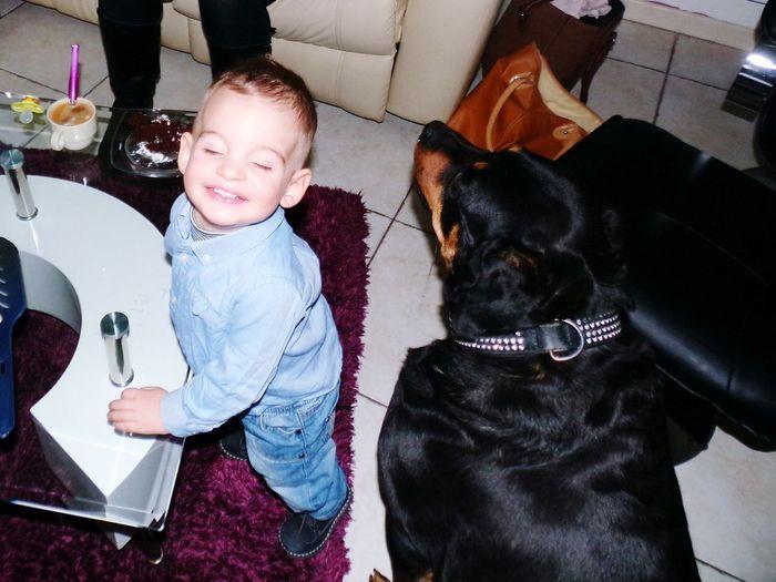 😚💙💕💞💝🐕 French People Photography Nephew  Frenchie Babyboy F4F Baby Animals Dog
