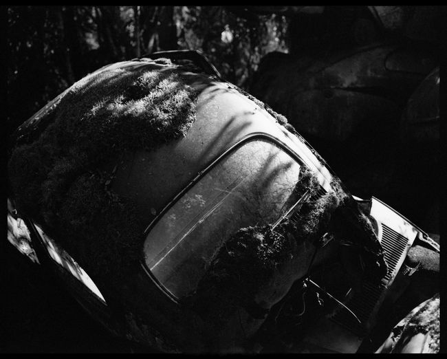 Metal and Rust in Båstnäs Abandonded Cars Abandoned Places American Cars American Cars Vintage Analogue Photography Automotive Black And White Båstnäs Car Cemetery Car Doors Exploring Filmphotography Forrest Hidden Secrets Magic Melancholy Metal Nature No People Plaubel Makina 67 Scandinavia Sweden Travel Trees Over Cars Vintage
