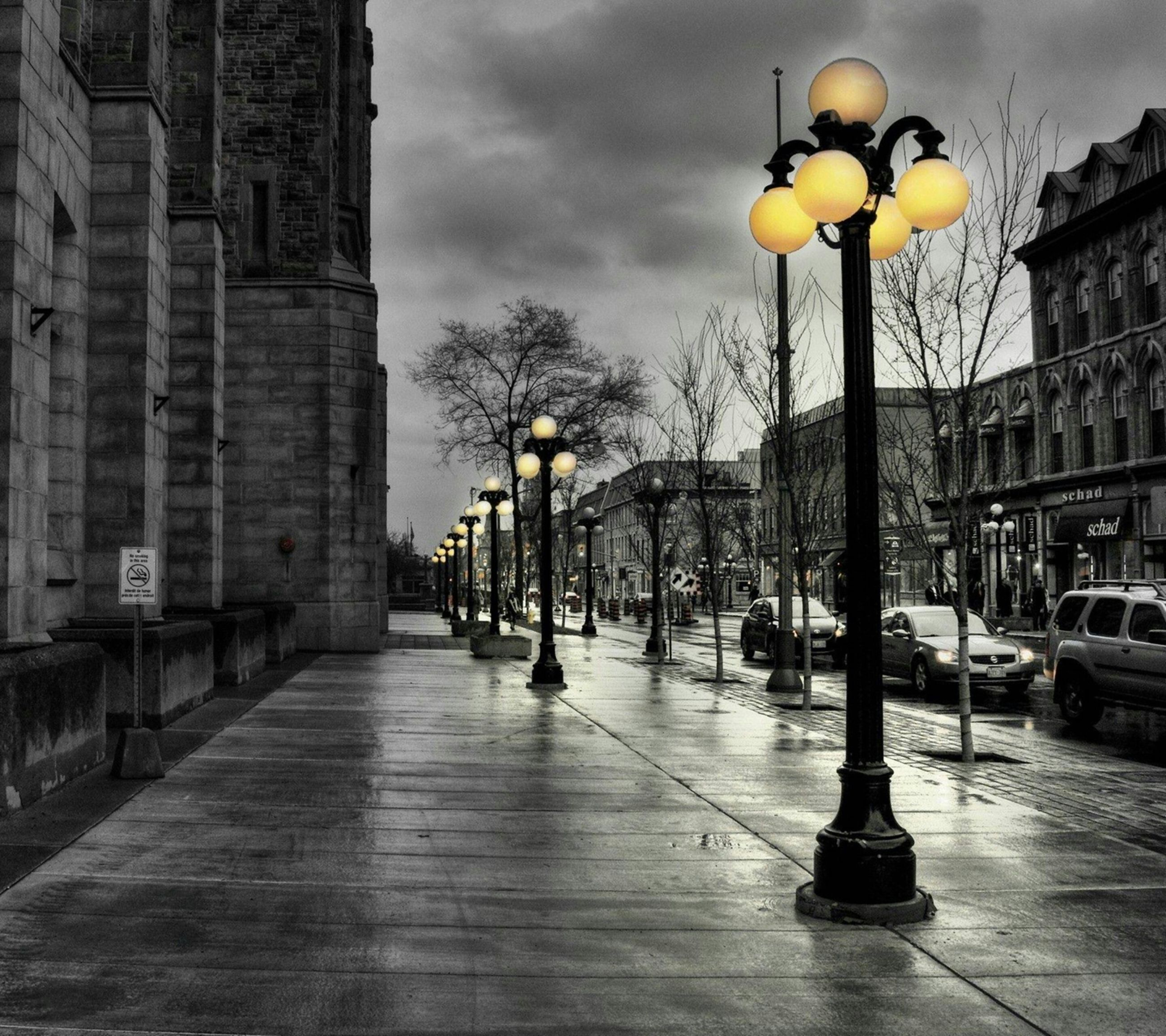 building exterior, architecture, built structure, street light, city, street, lighting equipment, illuminated, transportation, the way forward, tree, sky, city street, city life, car, incidental people, diminishing perspective, road, building, dusk