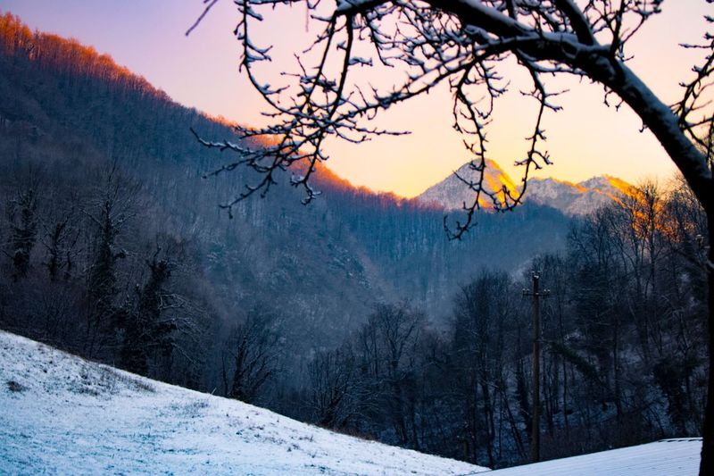 Sunset Sun Tree Snow Winter Beauty In Nature Cold Temperature Nature Scenics Sky Mountain Tranquil Scene Branch Skyscape Paradise Tranquility Beauty In Nature The Way Forward Tranquility Idyllic Bare Tree No People Outdoors Day