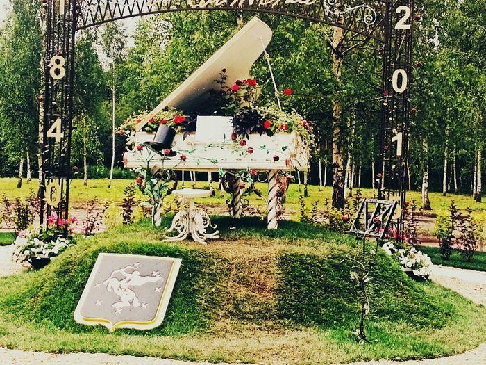 Фестиваль цветов Клин цветы фестиваль First Eyeem Photo
