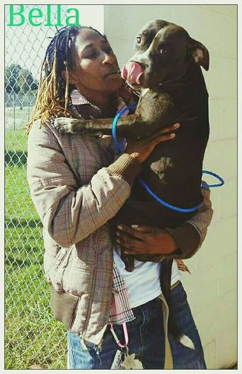 Love Without Boundaries Hello World Pitbulls Pitbull♥ Multi-talented ☺