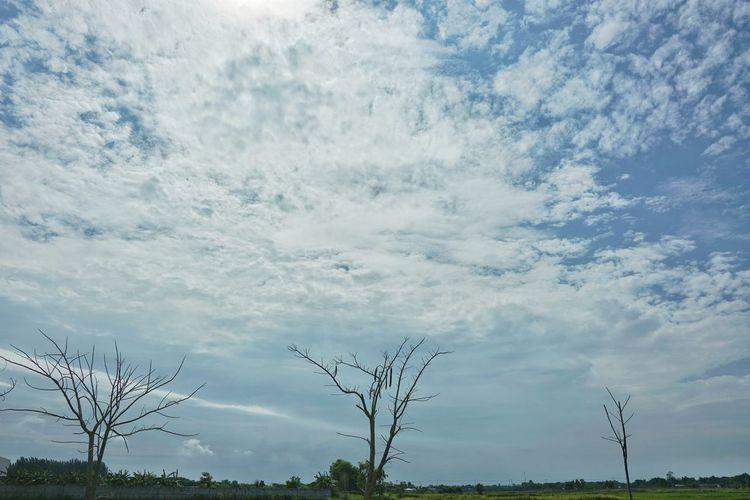 Cloud - Sky Tree Water Blue Rural Scene Sky