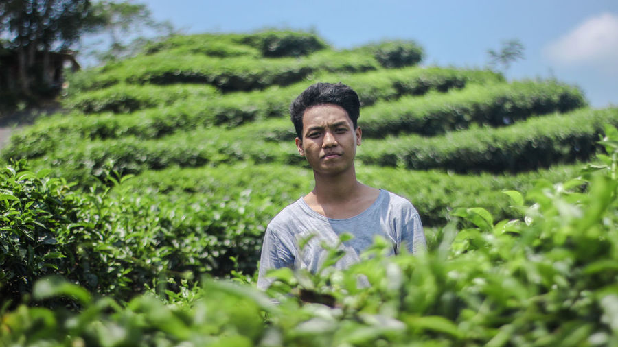 Portrait of young man standing amidst plants on agricultural field