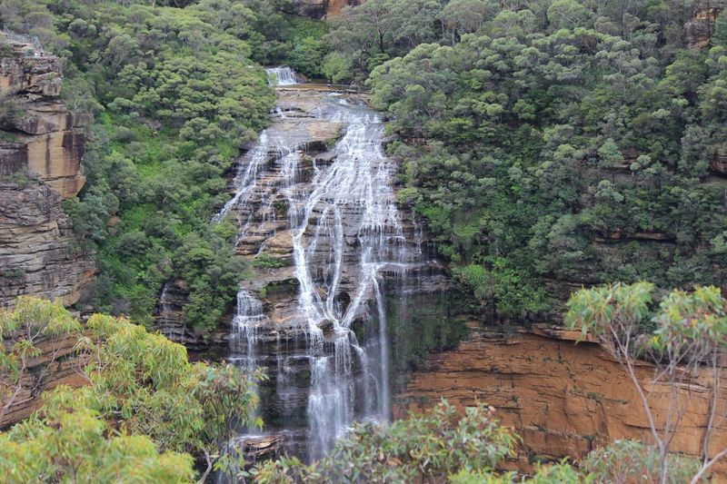 Blue mountains Australia Blue Mountains Plant Water Tree Motion Beauty In Nature Waterfall Scenics - Nature Nature Rock Flowing Water No People Day Green Color Flowing Splashing Forest