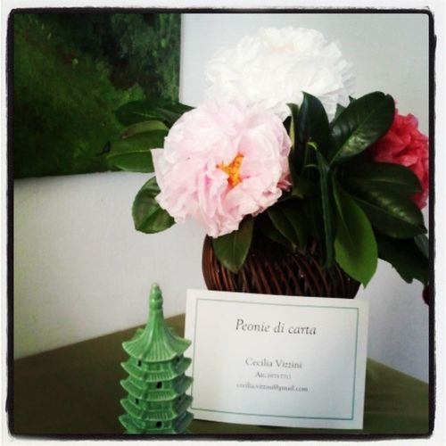 Messer tulipano Messertulipano Pralormo Handmade Peony  Paperflowers Paperpeony Peony