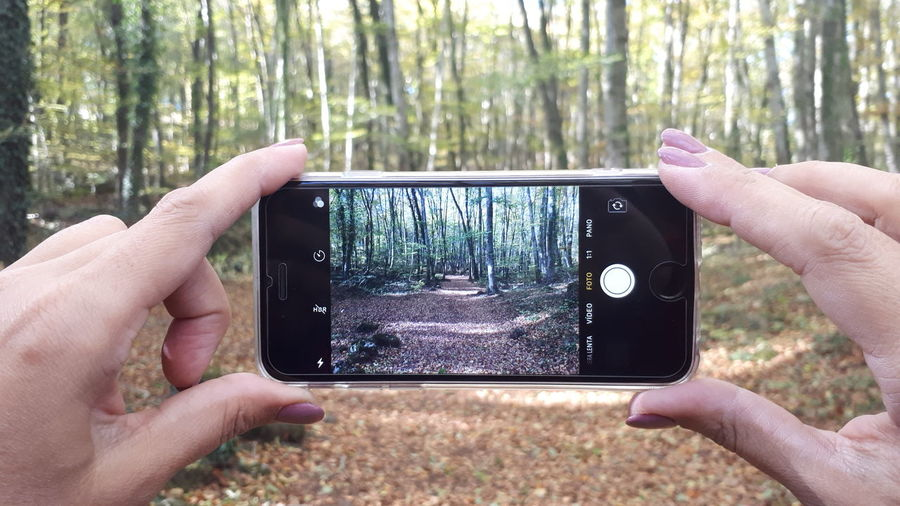 Mirada de iPhone Nature Day Photographing Photography Themes Nature Photography Rural Scenes Apple forest Nature_collection Field Fageda D'en Jorda