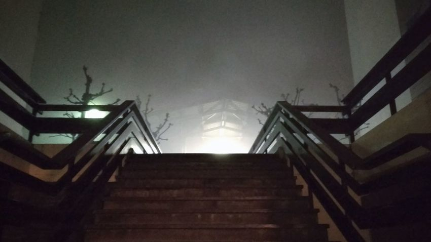 Redrum Light And Shadow Light Fog Cinema MOVIE Kubrick Staircase Steps And Staircases Steps Low Angle View Architecture Night Illuminated No People