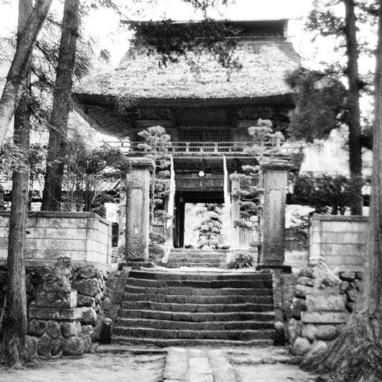 Japan Paisaje Japones Japon Monastery Nature Photography Paisaje Temple Blanco & Negro  Japanese Culture Fashion Photography Black & White Fantasy Photography Relaxation Relaxing Japanese Photography Japan Photography Japanese Style Tranquility Nature