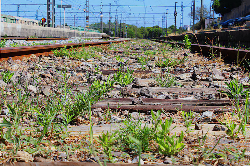 Nature Rail Beauty In Nature Day Girona No People Outdoors Railway Station Train Travel