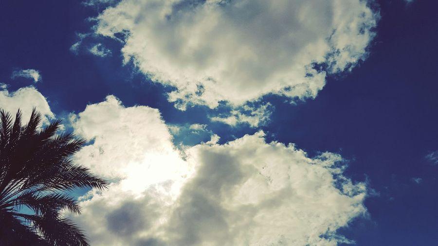 ولنا بعنق السماء أمنيات معلقة •• ستهطل يوما بغيث من فرح