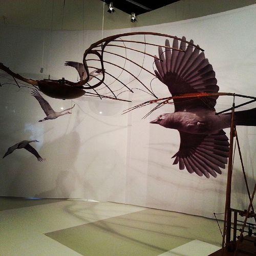 Leonardo da Vinci Instagram Exposição Exposicaoleonardodavinci Leonardodavinci anaturezadainvencao fiesp sesi siesp senai sp saopaulo saooutrospaulos paulista