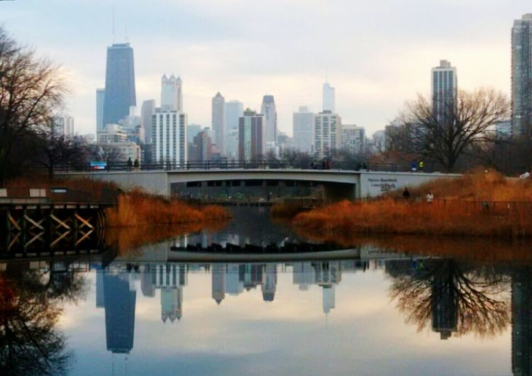 Lincoln Park Chicago Skyline Nature Boardwalk Water Reflections Showcase: December Mirror Image Reflections In The Water Reflection_collection Chicago Chicagoshots Cityscapes