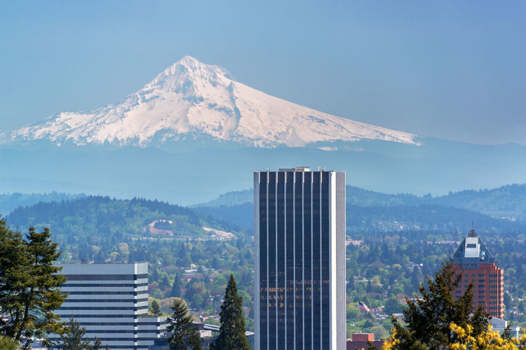 Skyscrapers in downtown Portland, Oregon with Mount Hood rising above them Architecture Beautiful Built Structure Business Center City Cityscape Downtown Landmark Landscape Modern Mount Hood Mountain Northwest Oregon Outdoors Pacific Panorama Portland Portland, OR Skyscraper Tourism Travel United States Urban