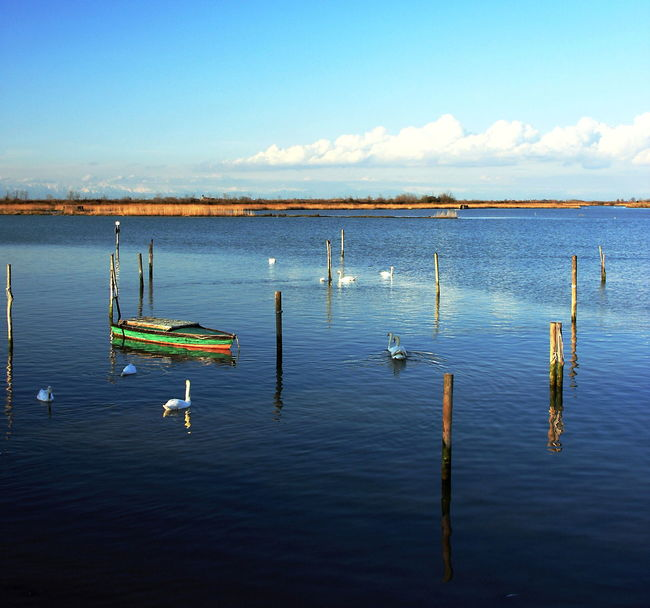 Beauty In Nature Blue Boat Laggon Landscape Lanscape Photography Nature Nautical Vessel Reflection Scenics Sea Sky Swans Tranquil Scene Tranquility Transportation Water Waterfront Wooden Post
