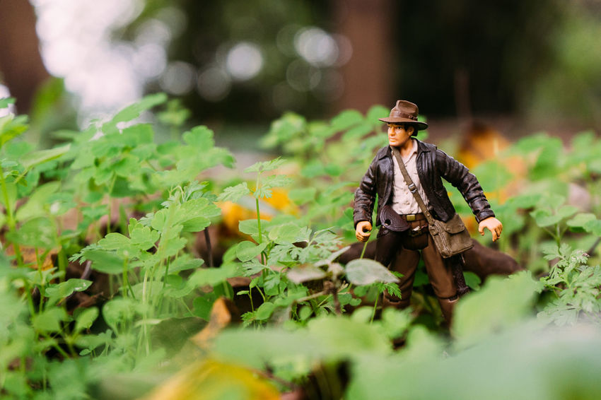 "Dr. Henry ""Indiana"" Jones, Jr. Landscape Colorful Light And Shadow Hello World Toys China Trvael Enjoying Life Nature"