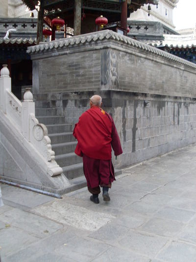 Lama Monk in Wutaishan Shanxi Architecture Buddhism Buddhist Monk Buddhist Temple Building Exterior Built Structure Day Full Length Lama Monk Lama Temple Leisure Activity Lifestyles Men Monkey One Man Only One Person Outdoors Rear View Red Religion Spirituality Staircase Steps Steps And Staircases Walking