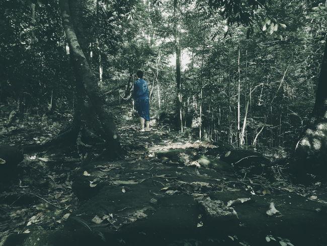 Camouflage Macx Zenfone Photography Landscape Mobilephotography Eyeem Philipines Eyeem Philippines Philippines Nature Eyeem Ph Check This Out! VSCOPH Check This Out Earth VSCO Photooftheday Mobile Photography Travel Monotone Fotografia Global Warming Minimal Dramatic Drastic Edit