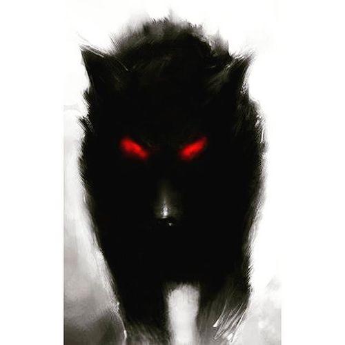 🐺🐺🐺🐺🐺🐺🐺🐺🐺🐺🐺🐺 Werewolf WolfGang Wolf Wolfs  Wolfrine