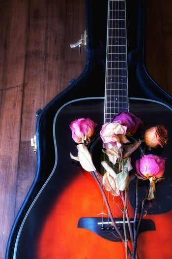High angle view of purple rose on table